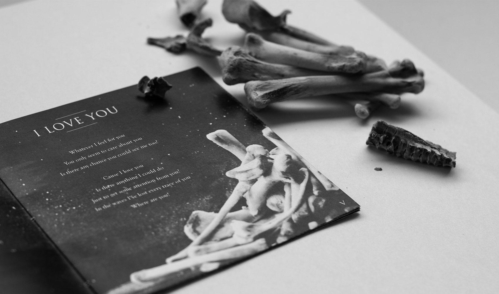 Woodkid Redesign Album - Personal Work: Booklet Knochen